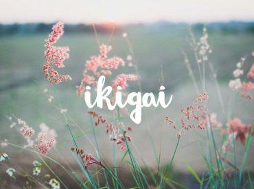 Ikigai Today I Meet