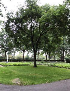 begraafplaats de munnikenhof Veenendaal Today I Meet